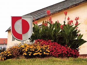 Das Gemeindewappen wurde Oberkappel 1981 verliehen: Es ist in rot und weiß gespalten und in der Mitte befindet sich eine Scheibe in denselben Farben. Sie stellt als Kreis den Zusammenhalt der Bürgerinnen und Bürger dar.